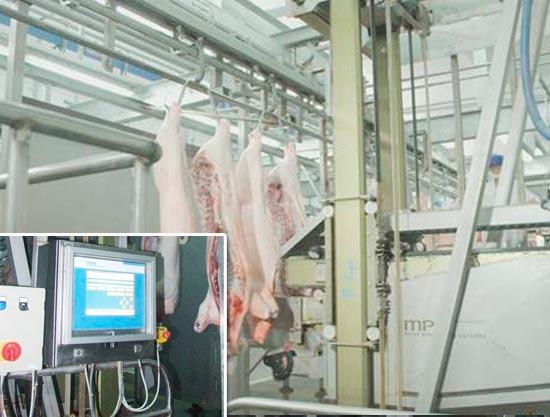 3荷兰产全自动机器人劈半机.jpg
